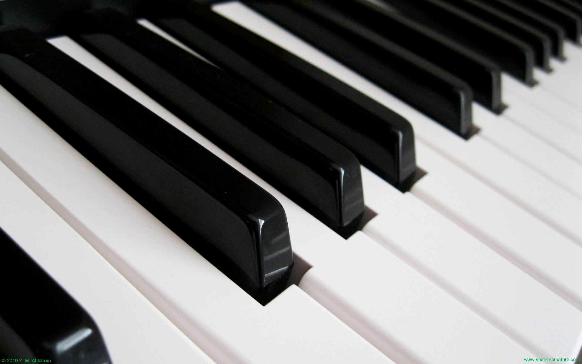 Dueling Pianos at North & Maple – 6/18